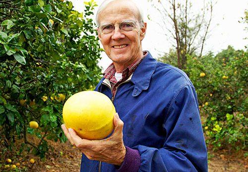Benny McLean, Uncle Matt's Organic