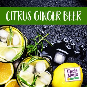 Citrus Ginger Beer Cocktail