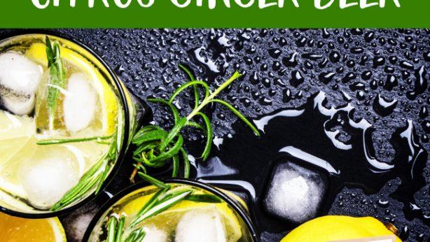 Citrus Ginger Beer Cocktail