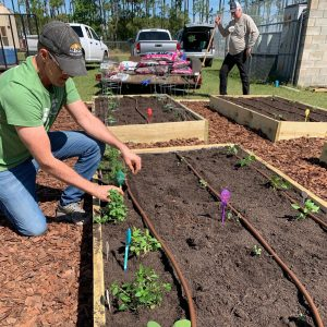 Earth Month with Uncle Matt's Organic